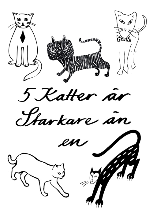 fem_katter_72